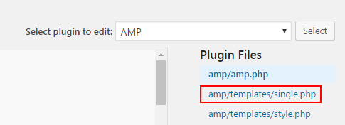 Editing the AMP plugin single.php file.
