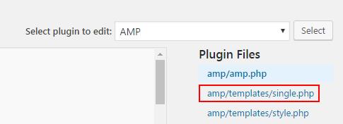 Editing the AMP plugin single.php file.