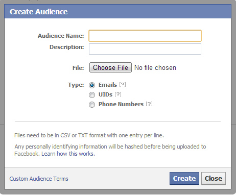 The Custom Audience Dialog Box in Facebook Ads