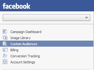 Custom Audience Tab in Facebook Ads
