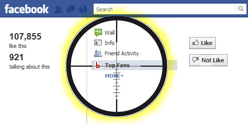 Targeting Competitor Fans via Facebook Ads