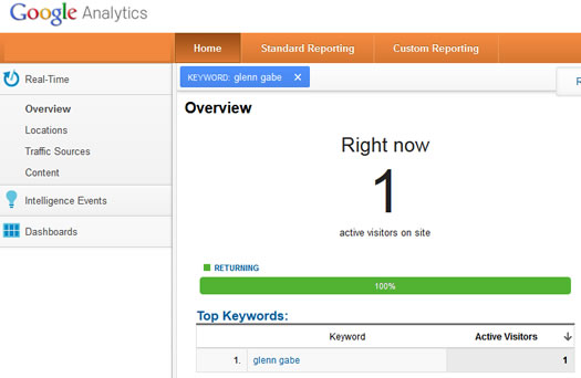 Google Analytics Referral Experiment - Search Visit