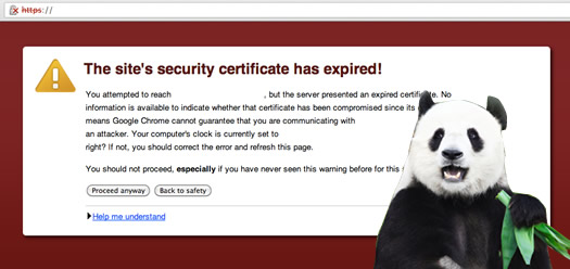 Expired SSL Certificate Impacting SEO Traffic