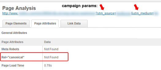 Not Using Rel Canonical With Campaign Parameters