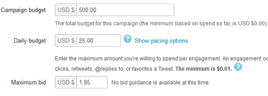 Setting a bid and budget in Twitter Ads